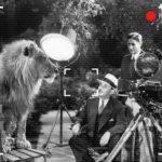 Hayvanların Kullanıldığı Film Sektörüne HAYTAP Denetimi Geliyor