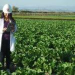 Çiftçileri Teknoloji İle Buluşturan Bir Kadın: Tülin Akın