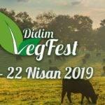 Didim Vegan Festivali 2019'a Yüz Bin Kişi Bekleniyor