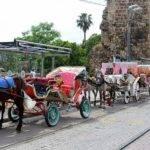 Sömürüye Son: Antalya'da Faytonlar 10 Haziran'da Kaldırılıyor