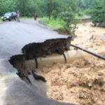 Trabzon'da Felaket: Sağanak Yağış Sonrası Araklı'da HES Borusu Patladı