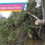 Kazdağları Kardeşliği: Derelerimiz, Ormanlarımız Yok Olma Tehlikesi Altında