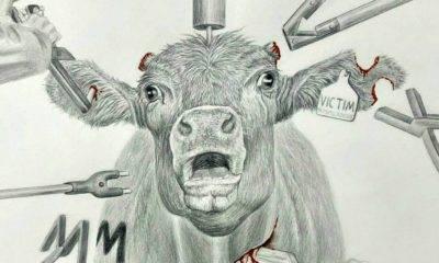 resmi hayvan hakları yürüyüşü