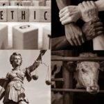 Türkiye Vegan Derneği'nden 'Dünya Vegan Günü' Etkinliği