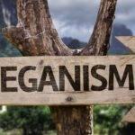 Dünya Vegan Günü: İnsanlar Neden Vegan Oluyorlar?
