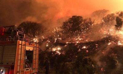 Antalya'nın Kaş İlçesi Orman Yangını