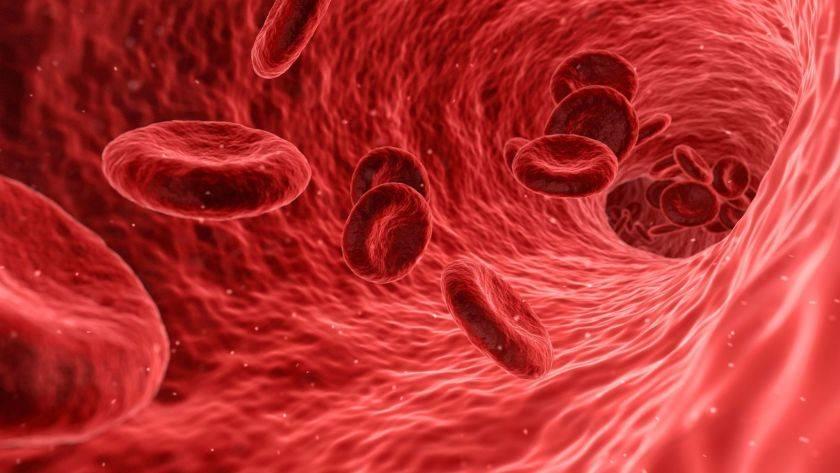 kan grubu kovid-19