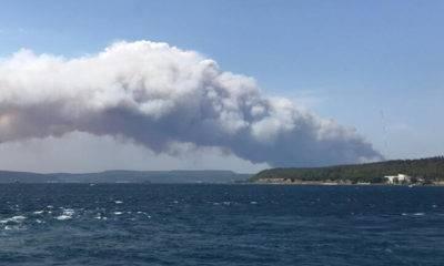 gelibolu yarımadası orman yangını