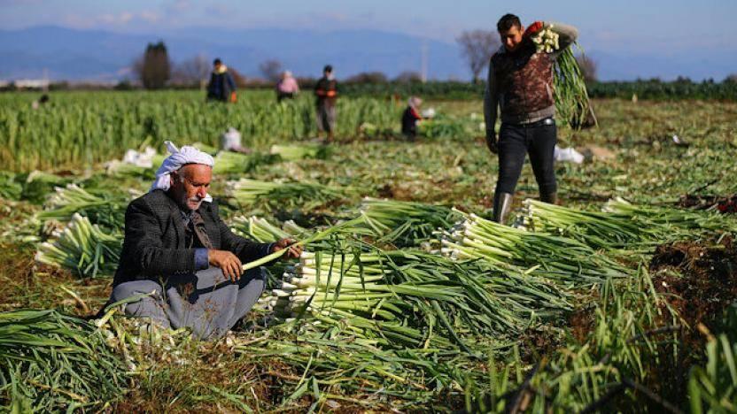 chp tarım raporu Orhan sarıbal