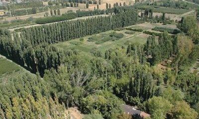 Mansur Yavaş Atatürk Orman Çiftliği