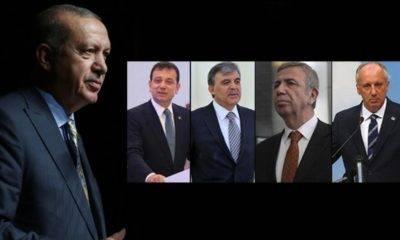 Avrasya araştırma Kemal Özkiraz