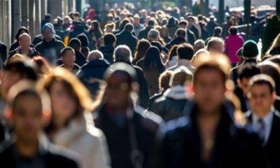 Sodev işsizler araştırması raporu