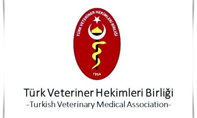 türk veteriner hekimler birliği