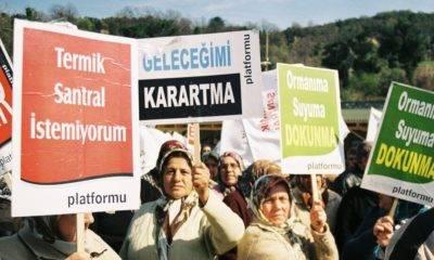 Bartın Platformu: 'Artık Amasra'ya Termik Santral Yapılamaz'