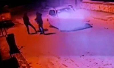 Konya'da Köpeği Silahla Vurduktan Sonra Tekmeleyip Çöpe Attılar