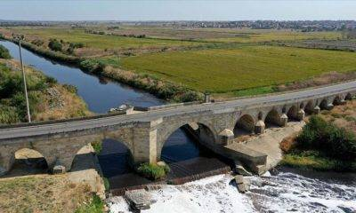 DOÇEK Trakya Toprakları Uzunköprü Bülbül Korusu