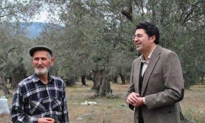 CHP'li Aytekin: 'Zeytinyağı İhracatı Enflasyonu Artırır Diye Yasaklandı'