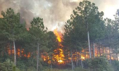 Türkiye'de 2020 yılında 3 bin 412 yangın