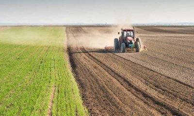 Özcan Purçu tarım