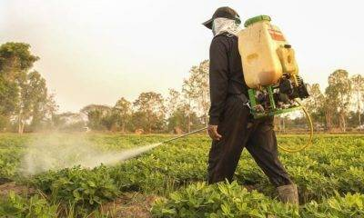 Pestisit Kullanımı