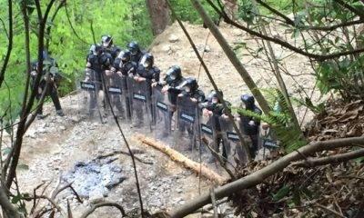 İkizdere Türkiye Ormancılar Derneği