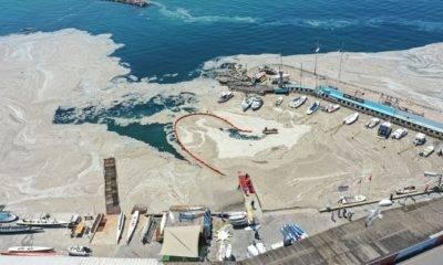 Çevre Mühendisleri Odası Deniz Salyası Müsilaj