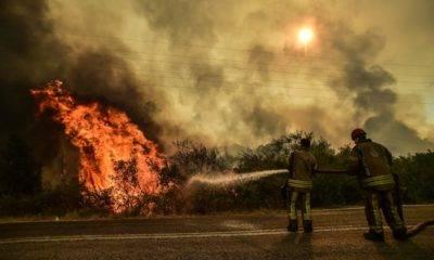 Marmaris yangın