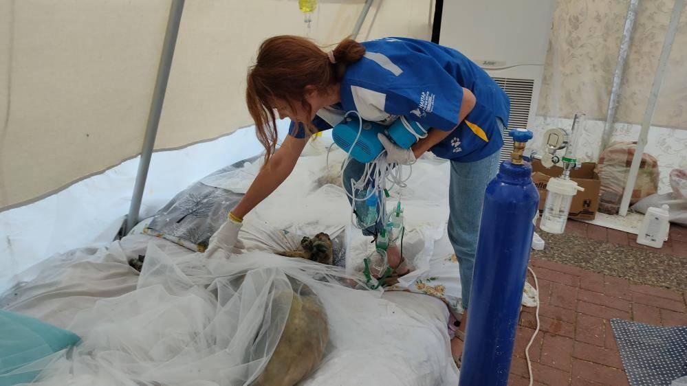 Haytap sahra hastanesi yangın