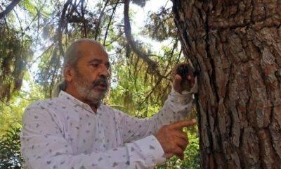 Tuncay neyişçi türkiye ormancılar derneği