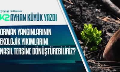 k2haber Ayhan küyük orman yönetimi yangın