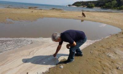 eğirdir gölü kuraklık Erol kesici