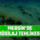 mersin müsilaj Deniz Ayas