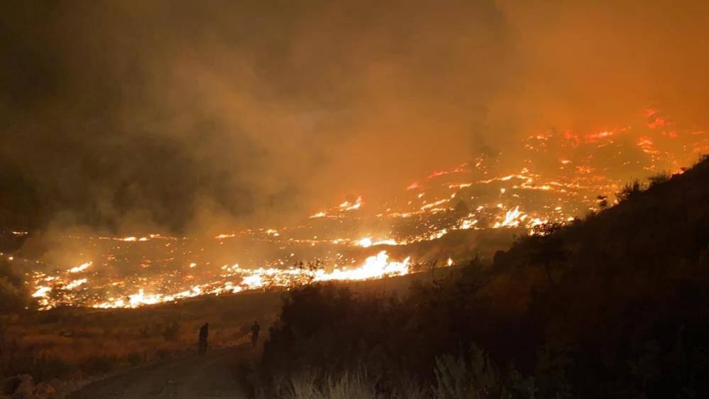 Muğla Dalaman Orman Yangını